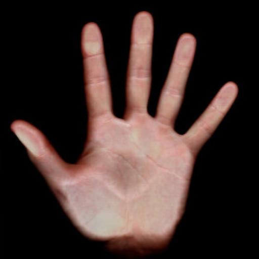 Justin Hand